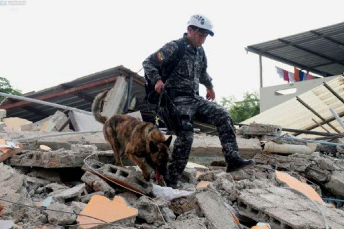 Equipos de rescate buscan vidas bajo los restos. Foto:AFP. Imagen Por:
