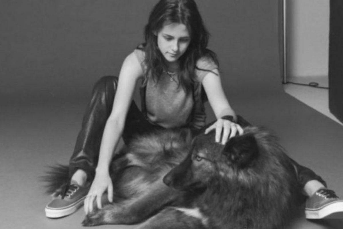 Kristen tiene una mascota que es una mezcla de perro y lobo. Foto:Vía Instagram. Imagen Por: