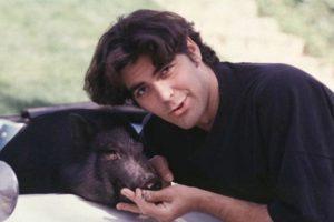 George Clooney y su puerquito Max, quien murió en 2006. Foto:Vía Instagram. Imagen Por: