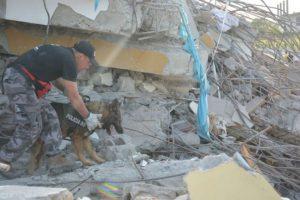 Otros animales rescatados Foto:facebook.com/policia.ecuador. Imagen Por: