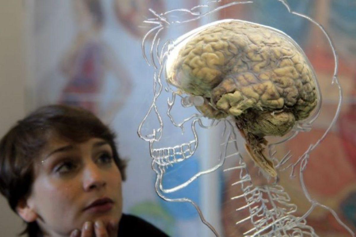 Memoramas, retos mentales, crucigramas, etc. Foto:Getty Images. Imagen Por: