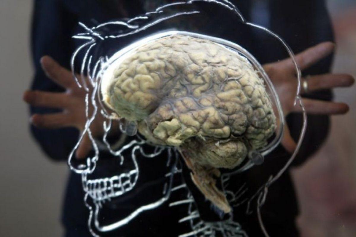 Para saber si nuestro problema de memoria puede ser degenerativo, el especialista recomienda: Acudir con un Neuropsicólogo, él es el especialista que puede ayudarnos a ubicar si el problema es grave. Foto:Getty Images. Imagen Por: