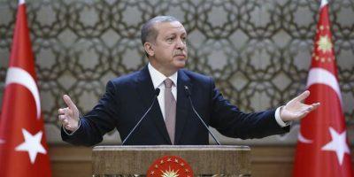 Turquía: Más de 1.800 procesos abiertos por insultar a Erdogan