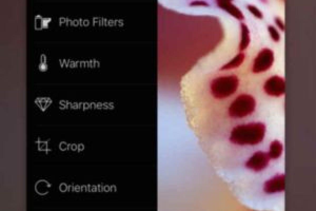 2.- Wonderoom Foto:App Store. Imagen Por: