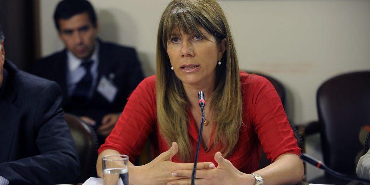 Ministra Rincón y veto a resolución del TC: