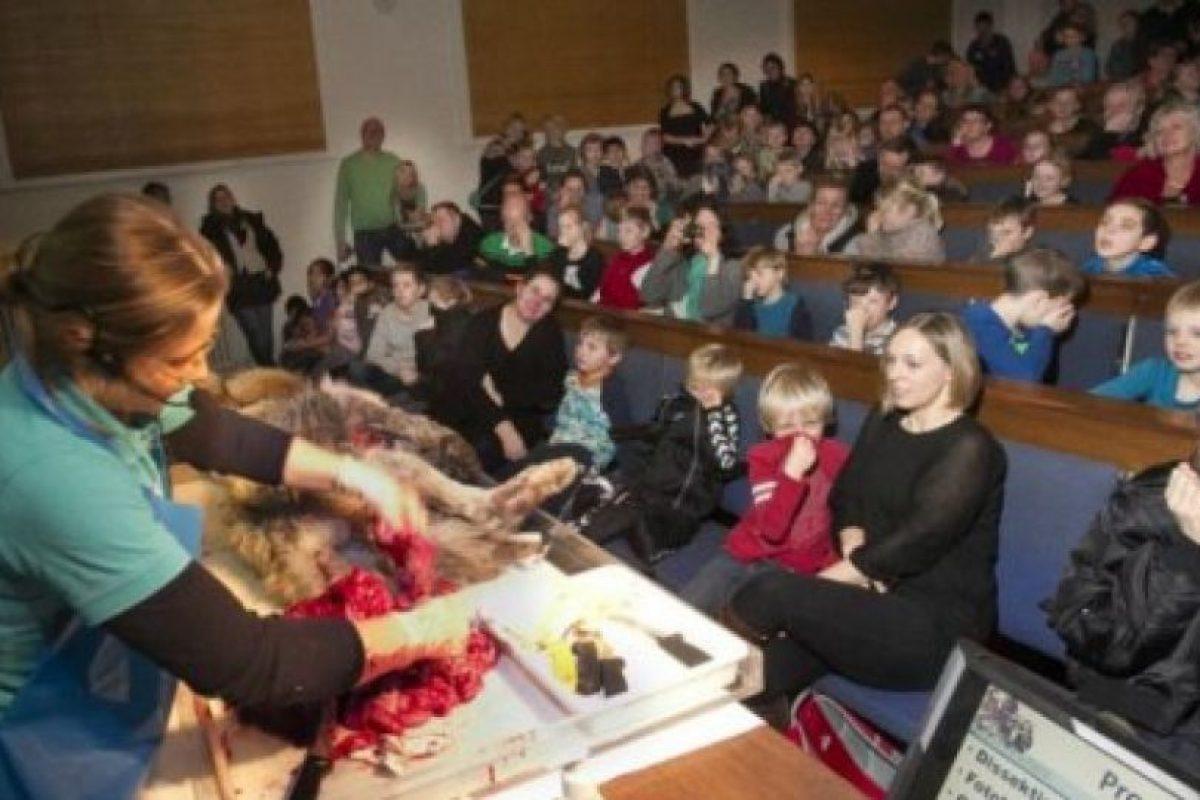 En el mismo país un lobo fue encontrado muerto y las autoridades del museo aprovecharon una vista escolar para mostrar el proceso de autopsia. Foto:AFP. Imagen Por: