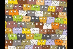 Otras ilusiones ópticas que desafían a Internet Foto:Tumblr.com. Imagen Por: