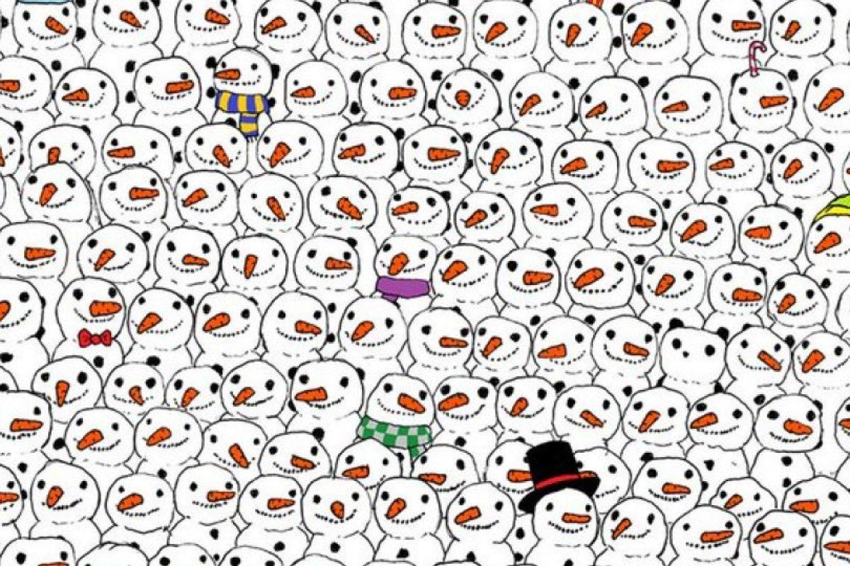 "Primero fue ""Encuentren al panda"" Foto:Tumblr.com. Imagen Por:"
