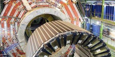 ¡Insólito! Una comadreja obliga a parar el mayor acelerador de partículas del mundo