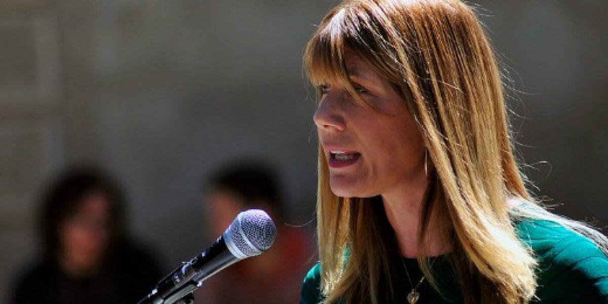 "Ministra Rincón y fallo del TC: ""Veto presidencial busca restablecer equilibrios"""