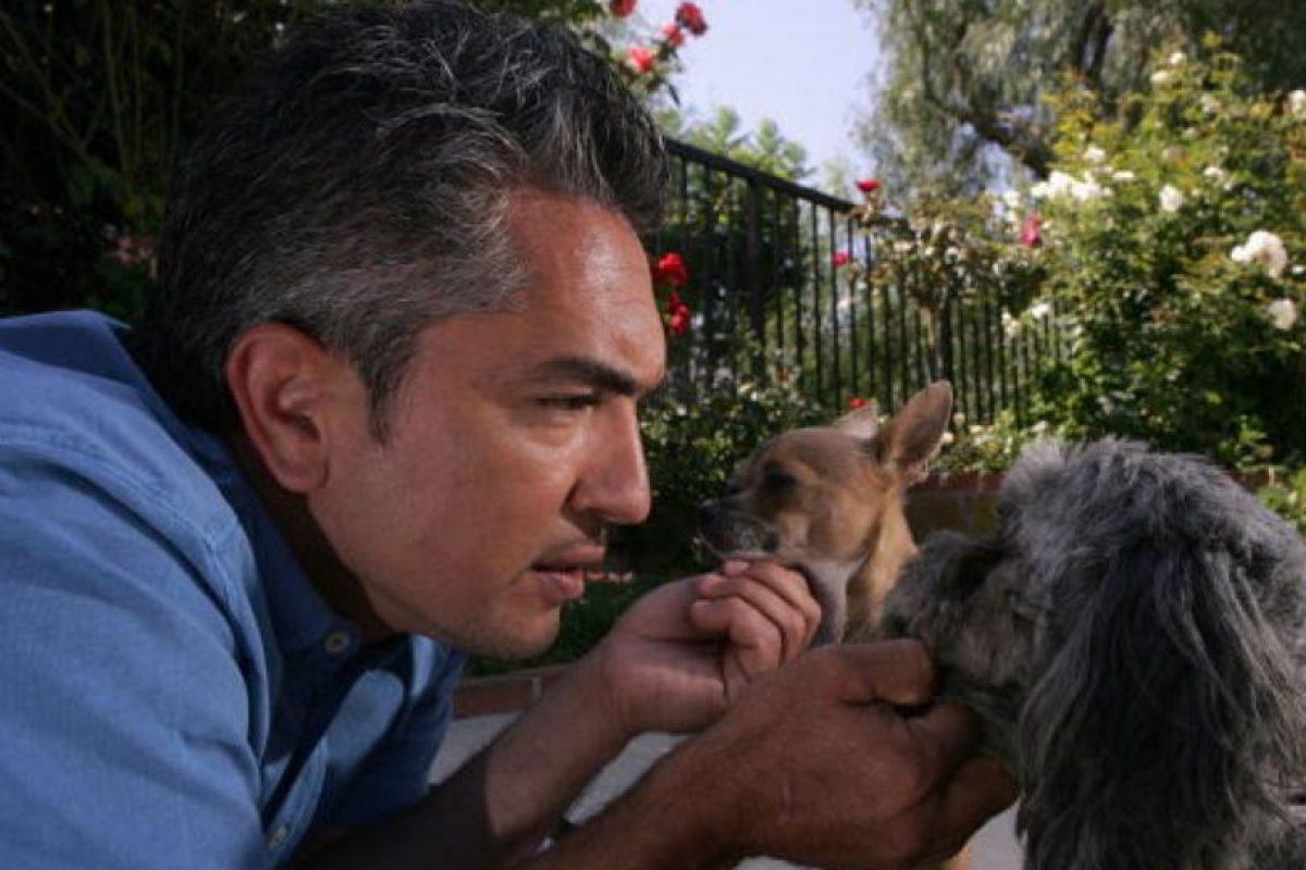 Al principio, el programa de César parecía no tener mucho éxito. Foto:vía Getty Images. Imagen Por: