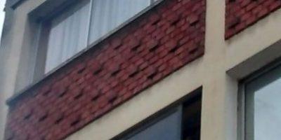 Rescatan a perrito que estuvo a punto de caer desde un cuarto piso en edificio de Santiago