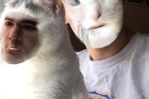 Pobre gato… Foto:Twitter/@dylanis943. Imagen Por: