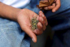 Canadá planea introducir una legislación federal de marihuana el próximo año. Foto:Getty Images. Imagen Por: