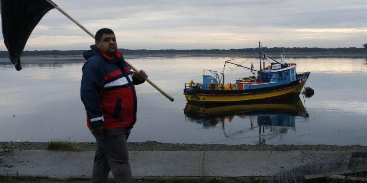 Biólogos marinos rechazan relación entre salmones muertos y marea roja