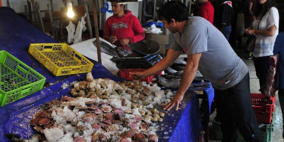 Puerto Montt: investigan tres casos de supuesta intoxicación por marea roja