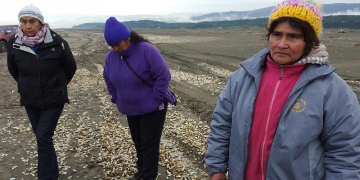 El lamento de los pescadores tras nueva varazón en Chiloé: