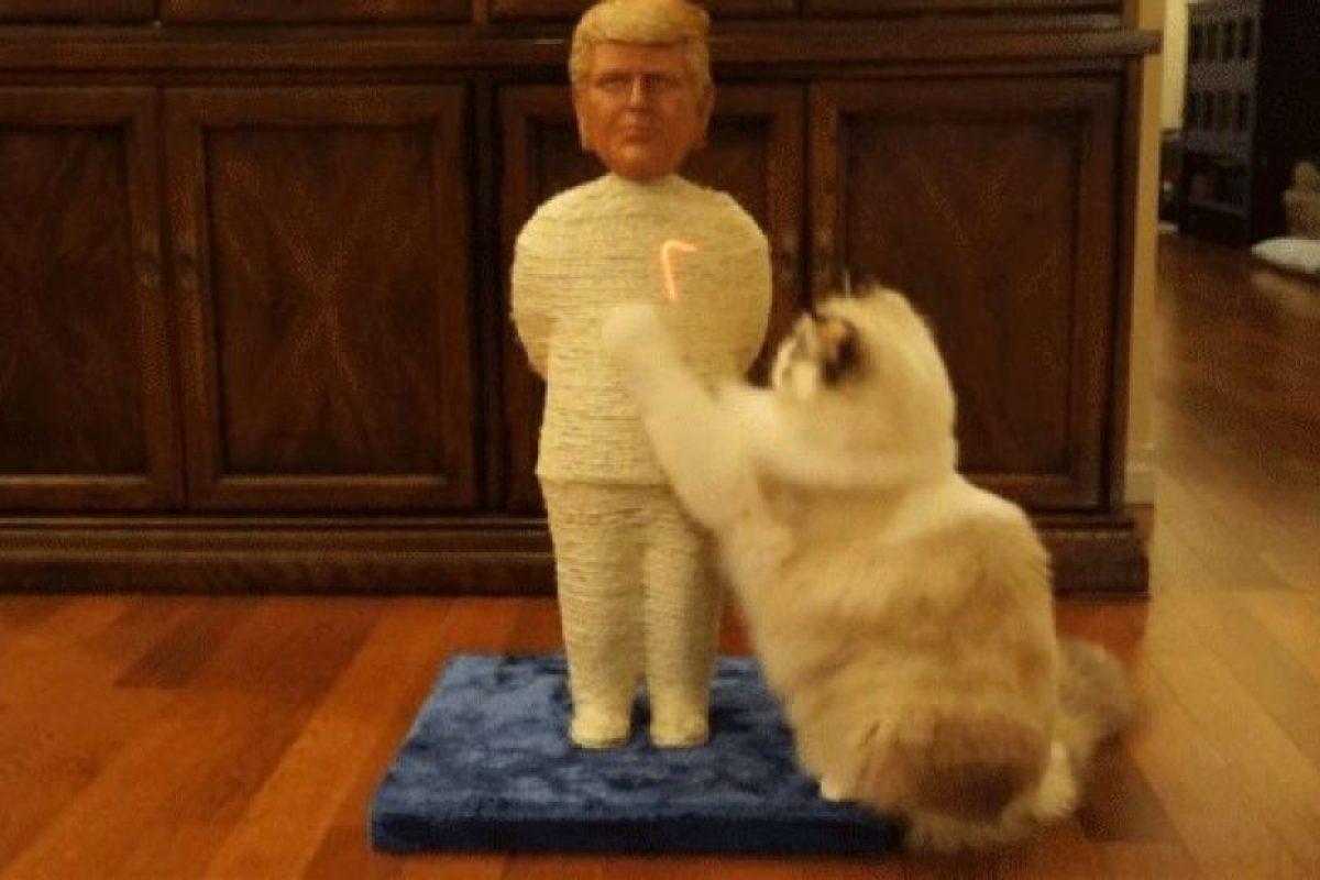 Donald Trump Foto:Politikats. Imagen Por: