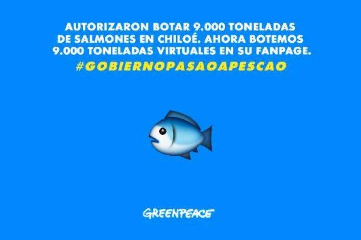 Foto:Greenpeace. Imagen Por: