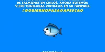 La campaña de Greenpeace por crisis de Chiloé que trollea al Facebook del Gobierno