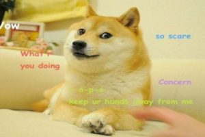 """Los """"memes"""" son de las más viejas creaciones en Internet. Foto:Tumblr. Imagen Por:"""