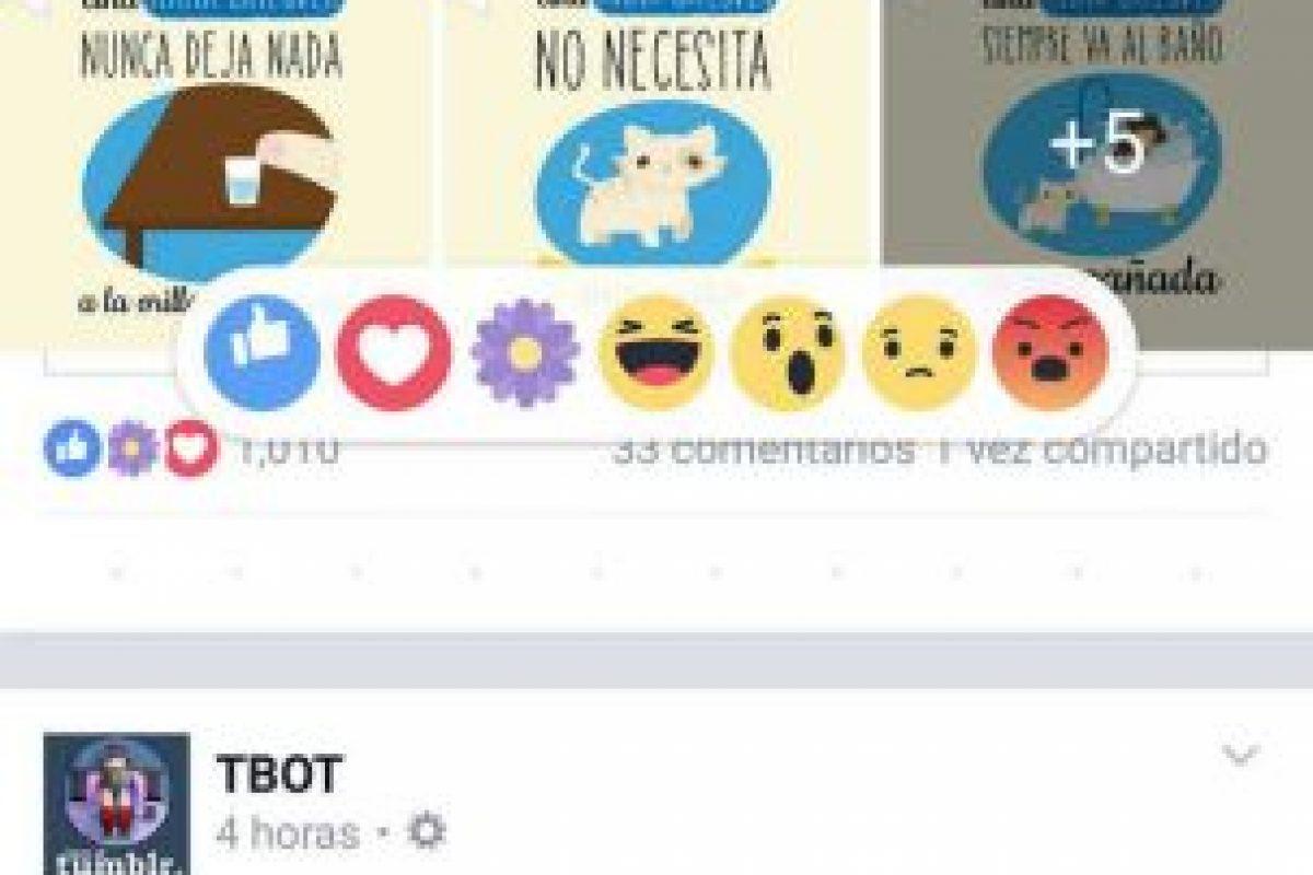 Antes de ser lanzada, Facebook hizo saber que llegaría para festejar el Día de las Madres en el mundo. Foto:Facebook. Imagen Por: