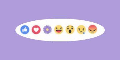 Facebook: ¿Por qué se fue la flor morada?