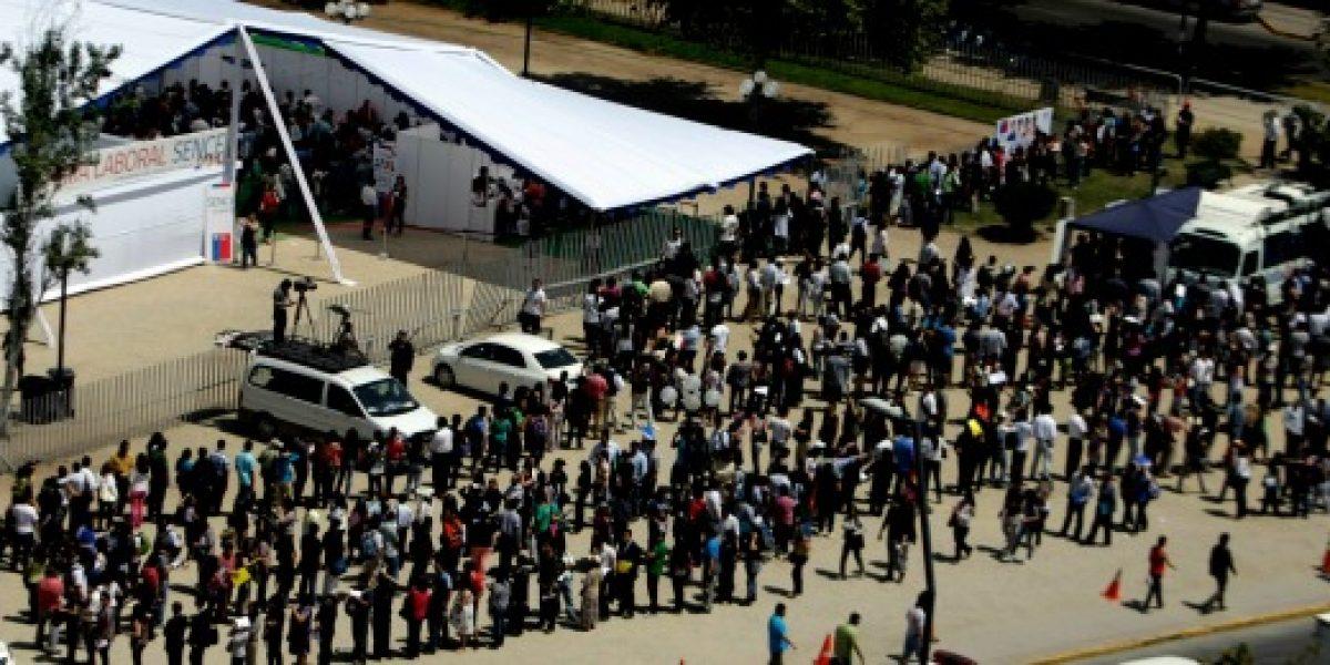 Expo Laboral de Providencia abre hoy sus puertas