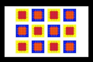 ¿Cuántos colores diferentes ven? Foto:Playbuzz. Imagen Por: