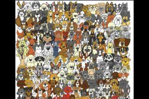 ¿Dónde está el panda? Foto:Playbuzz. Imagen Por: