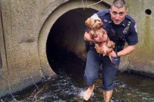 El agente Joe Brazil se volvió súper héroe luego de rescatar a un pequeño perro de un túnel. Foto:Vía Facebook. Imagen Por: