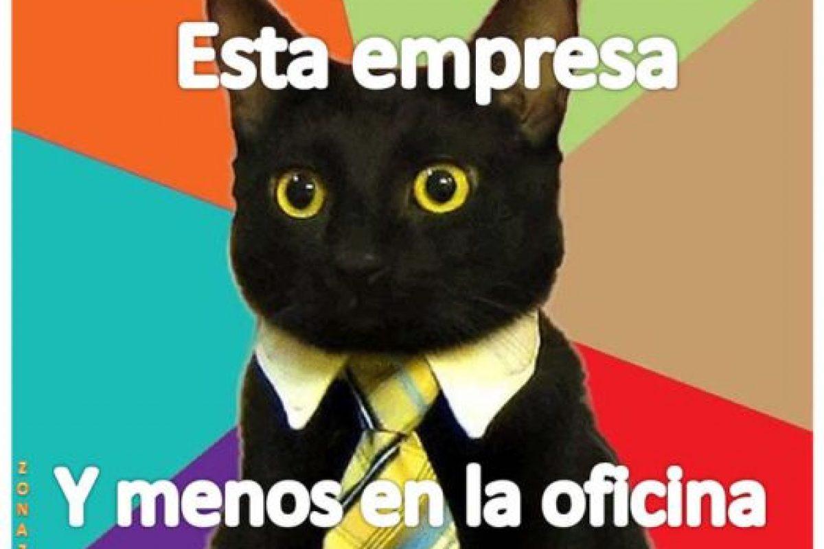 El gato de negocios. Foto:Tumblr. Imagen Por: