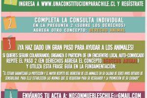 Campaña Foto:NoSonMuebles. Imagen Por: