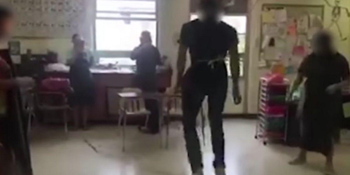 Peta condenó a jóvenes que usaron intestinos de gato para saltar la cuerda