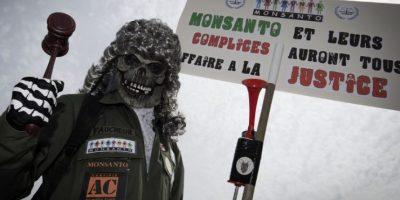 Manifestación en París contra la empresa estadounidense Monsanto