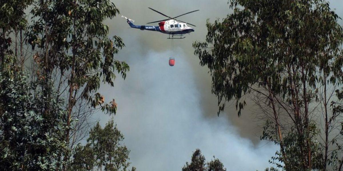 Intendencia declara Alerta Roja en Lago Ranco por incendio forestal