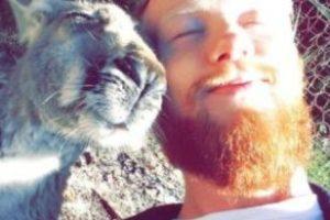 Tomando el sol con un canguro Foto:Imgur. Imagen Por: