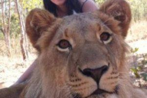 Con un león Foto:Imgur. Imagen Por: