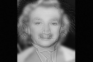 ¿Einstein o Marilyn Monroe? Foto:Twitter. Imagen Por: