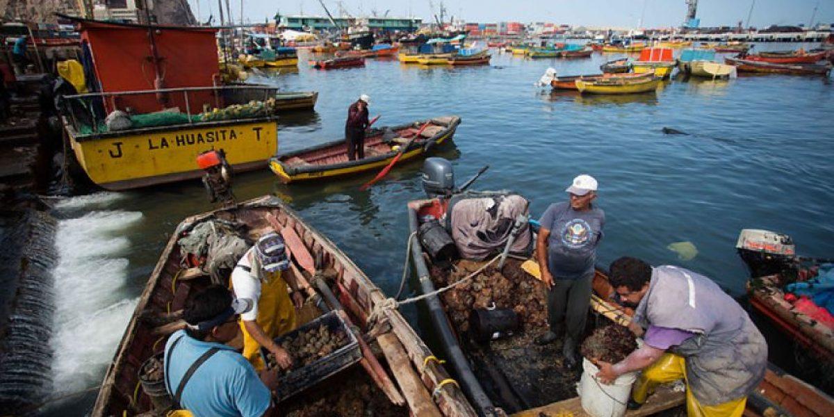 Lentes y skates: así es el novedoso uso para las redes de pesca utilizadas en Talcahuano