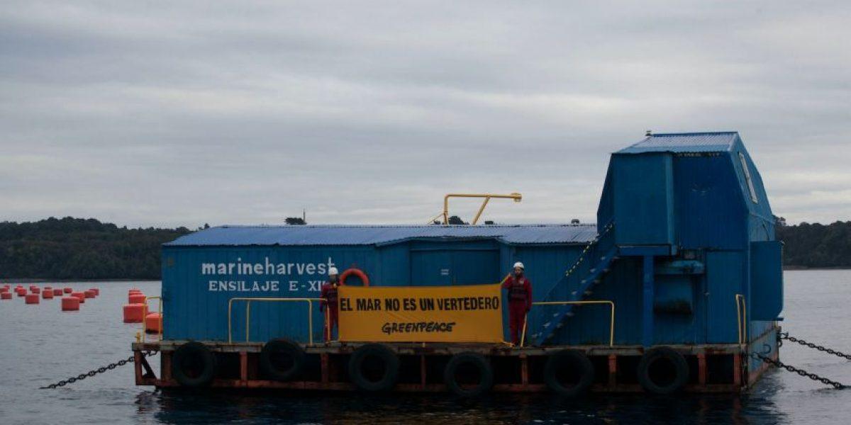 """Greenpeace a las salmoneras en Chiloé: """"El mar no es un vertedero"""""""