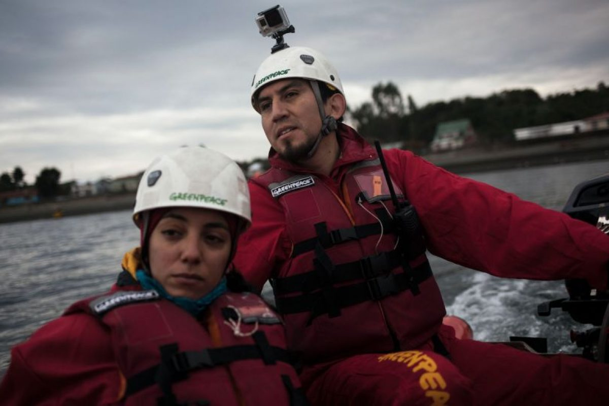 Foto:Greenpeace/ Cristóbal Olivares. Imagen Por: