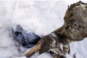 Se supo que el primer cuerpo perteneció a un hombre de entre 52 y 71 años Foto:AFP. Imagen Por: