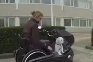 Las motocicletas para personas con sillas de ruedas cada vez son más y mejores. Foto:YouTube. Imagen Por: