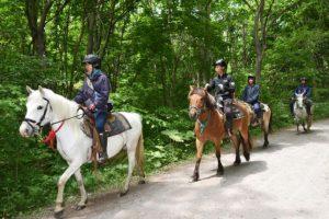 Incluso, con un escuadrón a caballo Foto:AP. Imagen Por: