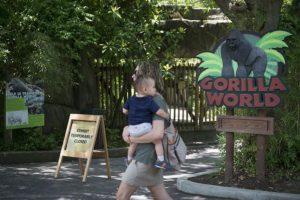 """""""Fue la decisión correcta"""", comentó el director del zoológico. Foto:AP. Imagen Por:"""
