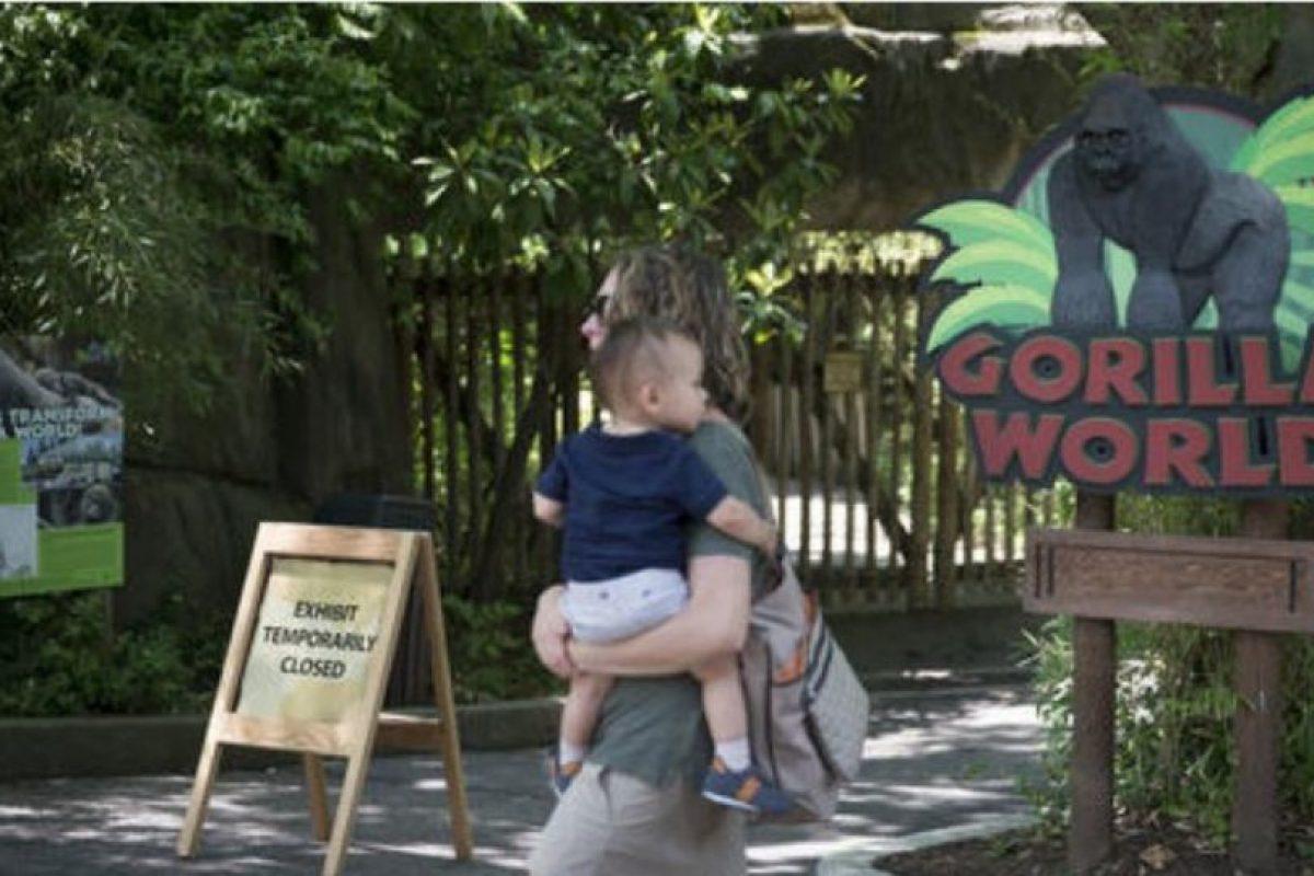 Harambee fue sacrificado cuando estaba al lado de un niño de cuatro años que cayó en su fosa en el Zoológico de Cincinatti. Foto:vía AP. Imagen Por: