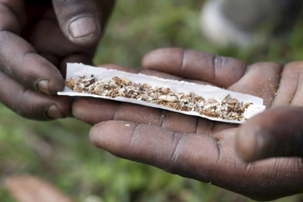 La droga es altamente adictiva y puede causar graves problemas de salud, tales como hemorragias internas, úlceras de estómago y finalmente la muerte. Foto:vía Wikipedia. Imagen Por: