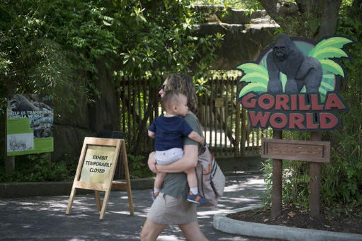 El primate tenía 17 años Foto:AP. Imagen Por: