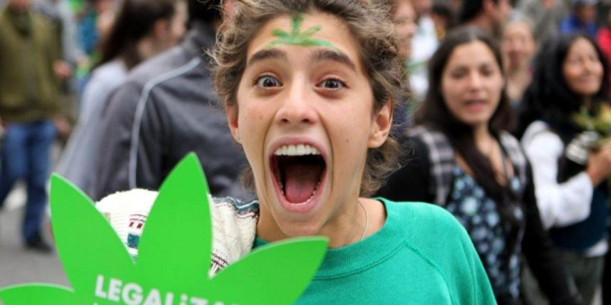 Uruguay afina detalles para vender marihuana en 50 farmacias